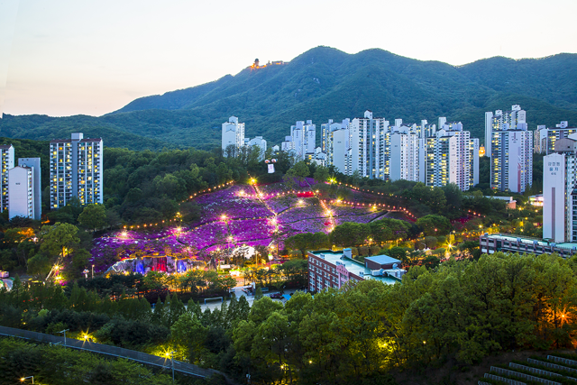'2019 군포철쭉축제' 24일 문을 열다