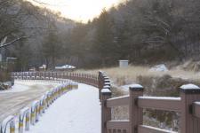청계산 맑은숲 공원 겨울 풍경(포토)