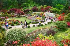 '코로나 19'로 휴관한 도내 산림휴양시설, 22일부터 점진적 운영 재개